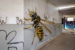 these-ultra-realistic-insect-graffiti-works-are-absolutely-incredible-terrifying-1080x720