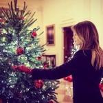 6 stvari, ki jih niste vedeli o božičnem drevesu v Beli hiši,