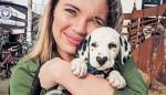 Wiley je najprikupnejši dalmatinec na svetu in za to je kriv njegov smrček