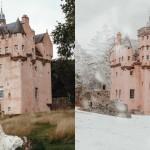 roza dvorec