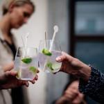 Gin Tonic 008