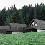 Bergmaisterwolf Fan Forest Houses