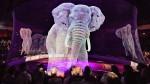 Hvala, ker vam je mar: cirkus v Nemčiji uporablja holograme namesto resničnih živali, ker želi ustaviti trpinčenje