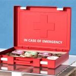 In Case of Emergency: se lahko upreš skušnjavi?