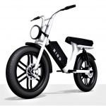 Bird Cruiser: robustno električno kolo za dva, ki spominja na moped