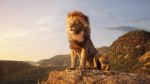 the-lion-king-2019-official-trailer (1)